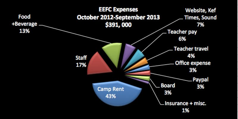 2013_expenses_large